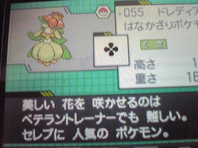 Pokémon Noir et Blanc : screen en pagaille 37611