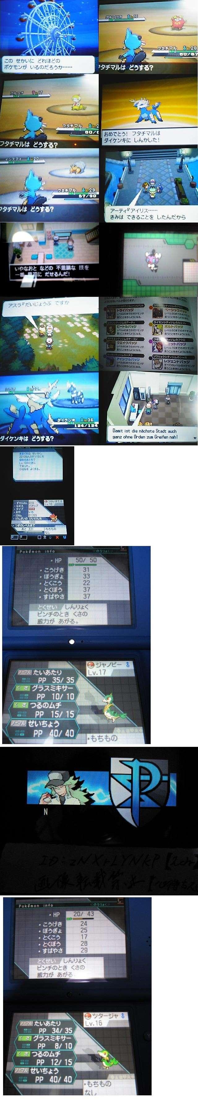 Pokémon Noir et Blanc : screen en pagaille 37711