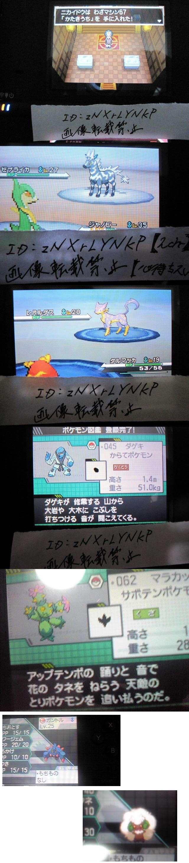 Pokémon Noir et Blanc : screen en pagaille 37810
