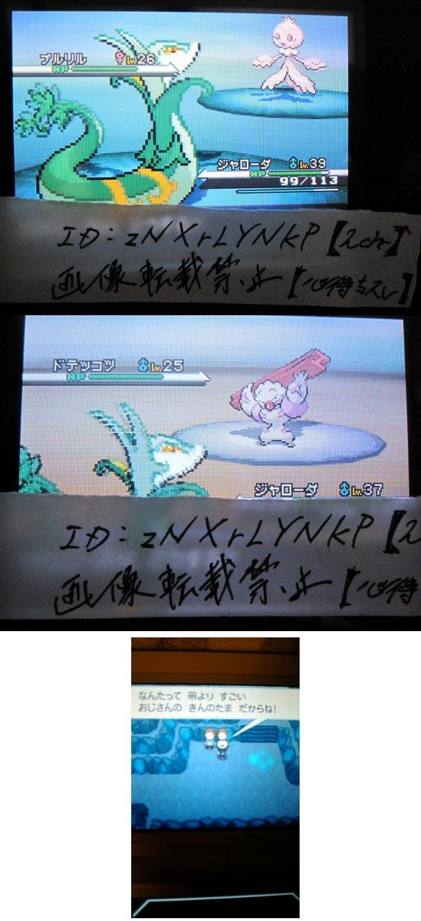 Pokémon Noir et Blanc : screen en pagaille 37910