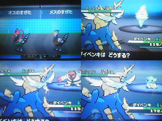 Pokémon Noir et Blanc : screen en pagaille 38410