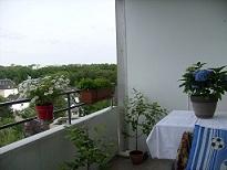Gartenlaube - Seite 4 23b_0015