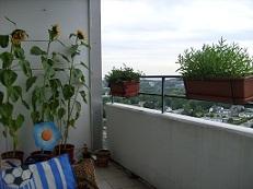 Gartenlaube - Seite 4 33b_0011