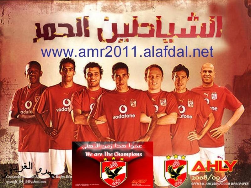 amr2011