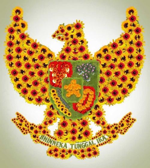 Flower Art : The Garuda 6a012011