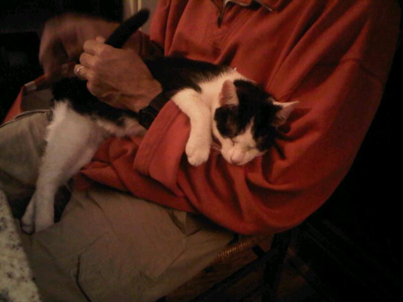 Curtis, (--> rebaptisé Elvis), sa vie, son oeuvre ... Img00410