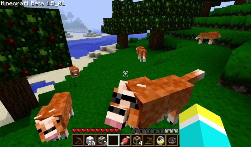 Serveur Officiel de Minecraft pour Nintendo World - Page 4 2011-013