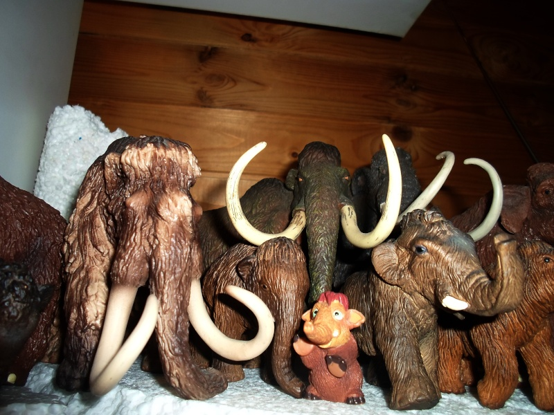 Kinto Favorite FP-002 Wooly Mammoth: A walkaround by Kikimalou Sam_2810
