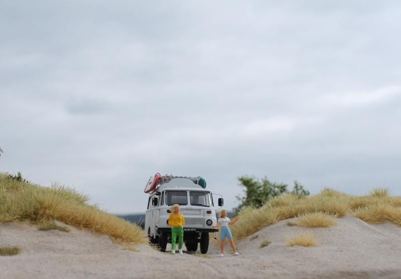 An der Ostseeküste..... Img_6410