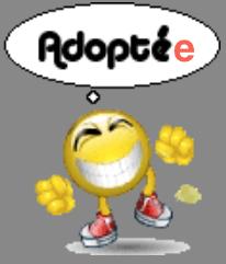 GAIA, jeune chienne Huskie née le 25.05.2014 REFU Suisse Adopty12