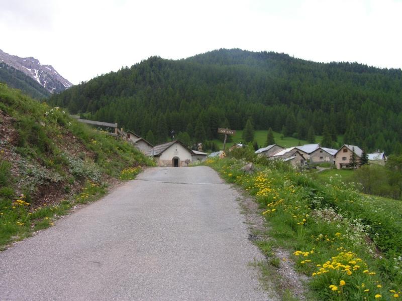Nouvelles photos de nos Alpins. Pict0010