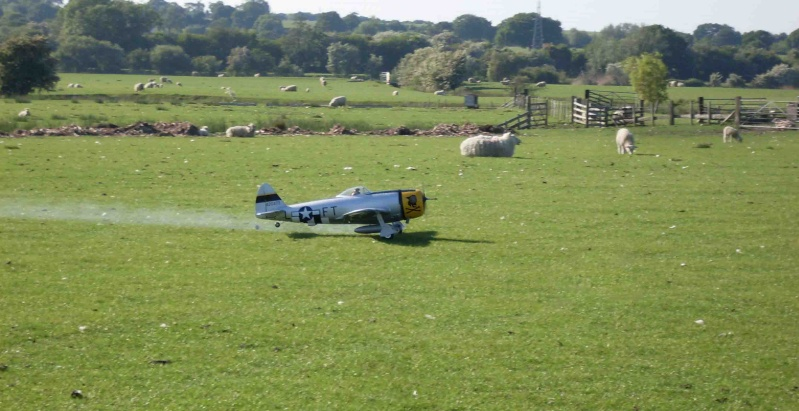 F16s and sheep herding.... P-47_210