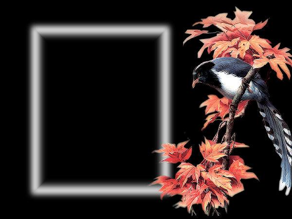Défis masques feuilles d'automne Defi_m13