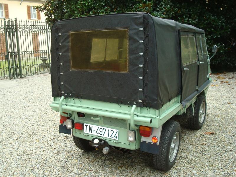 Haflinger 00411