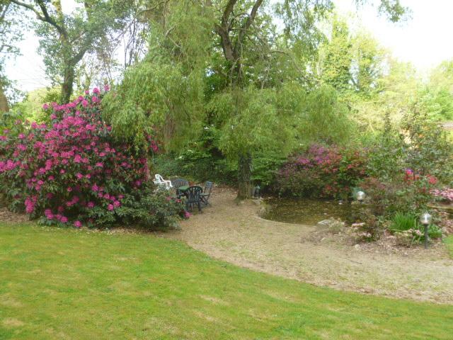 Aperçus de mon jardin Breton 00812