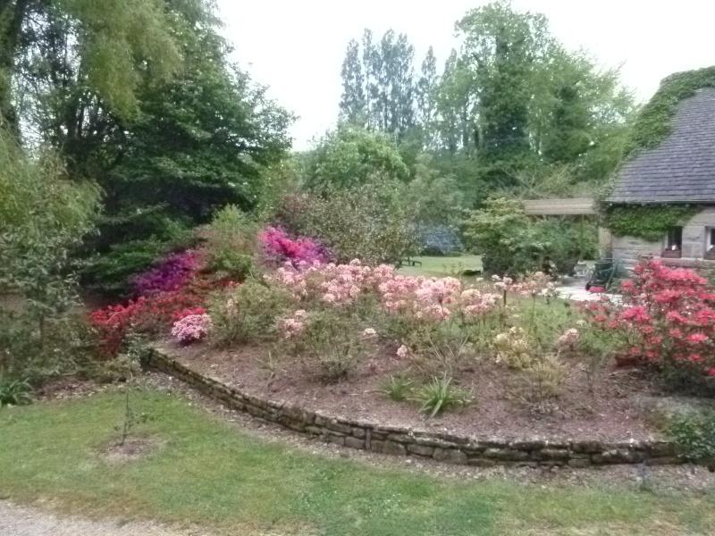 Aperçus de mon jardin Breton 01818