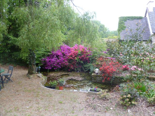 Aperçus de mon jardin Breton 01913