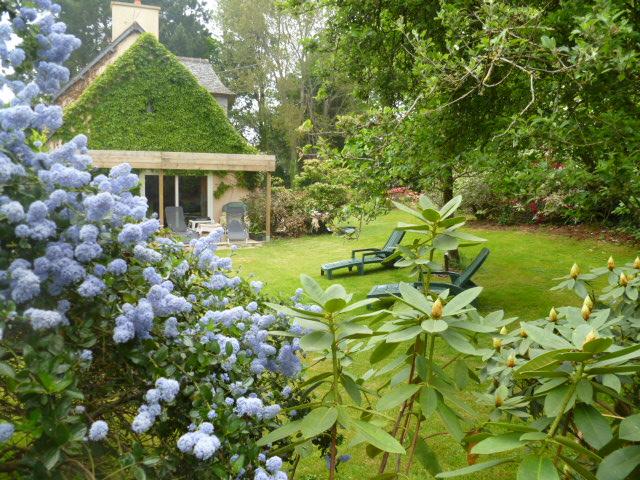 Aperçus de mon jardin Breton 02912
