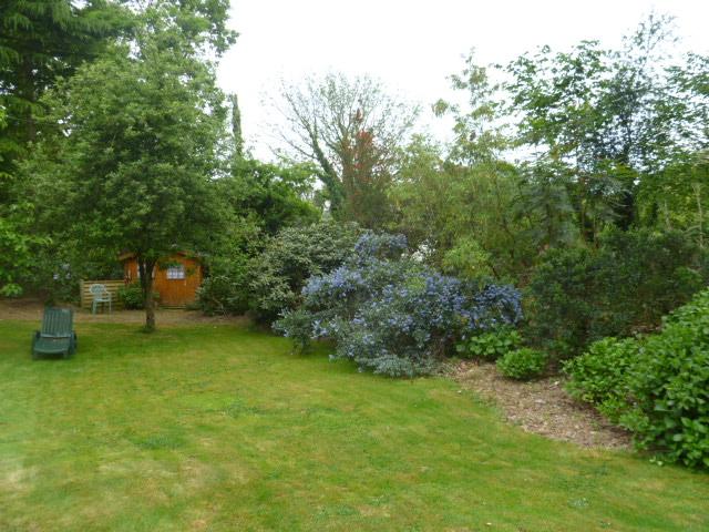 Aperçus de mon jardin Breton 03113