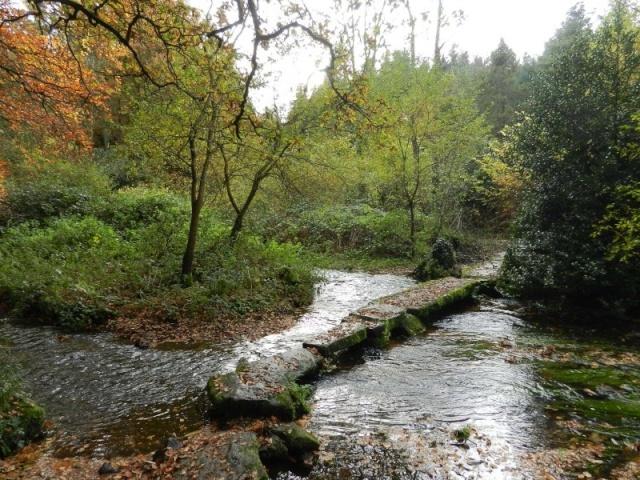 La rivière de Rivoal en Finistère Bodist10