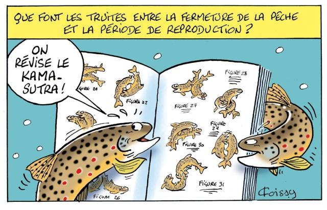 La vandoise.com - Page 9 12080110
