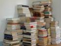 Une bibliothèque sans littérature ? Tas_de12