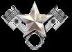 Silver Star Heroes