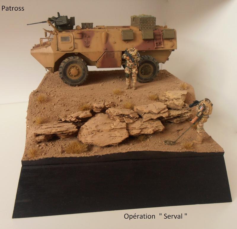 "Vab "" Opération Serval "" ( Heller, Blast, Eduard ) au 1/35ème. - Page 7 P9051424"