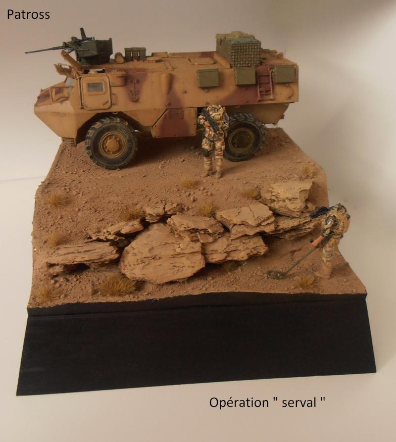 "Vab "" Opération Serval "" ( Heller, Blast, Eduard ) au 1/35ème. - Page 7 P9051425"