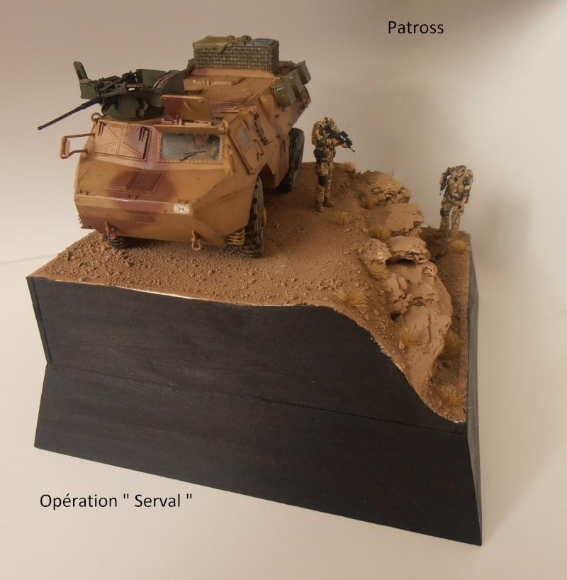 "Vab "" Opération Serval "" ( Heller, Blast, Eduard ) au 1/35ème. - Page 7 P9051426"
