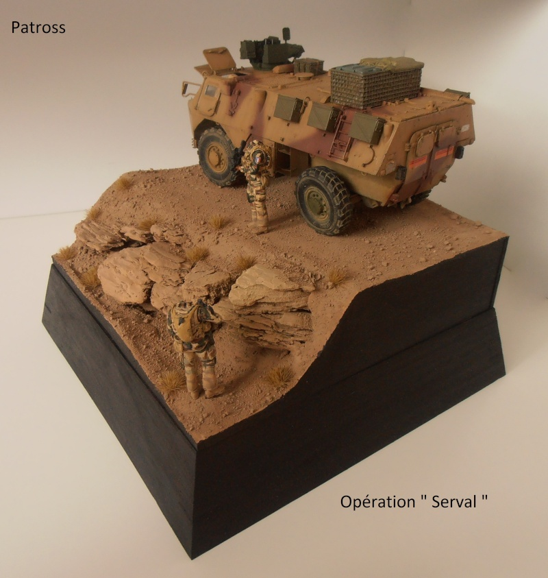 "Vab "" Opération Serval "" ( Heller, Blast, Eduard ) au 1/35ème. - Page 7 P9051427"