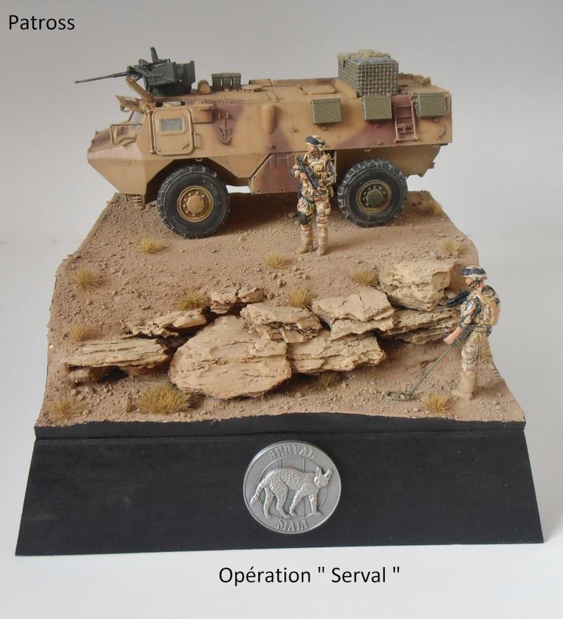 """Vab """" opération serval """" ( 1/35ème ) - Page 2 P9061411"""