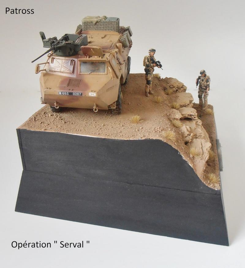 """Vab """" opération serval """" ( 1/35ème ) - Page 2 P9061412"""