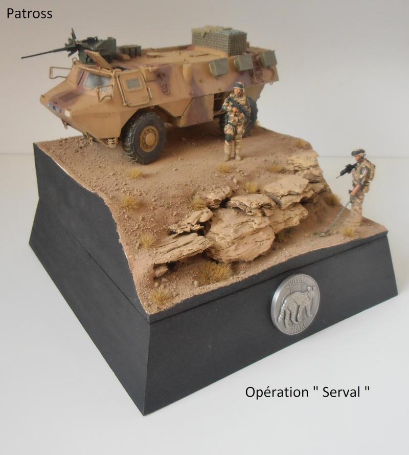 """Vab """" opération serval """" ( 1/35ème ) - Page 2 P9061413"""