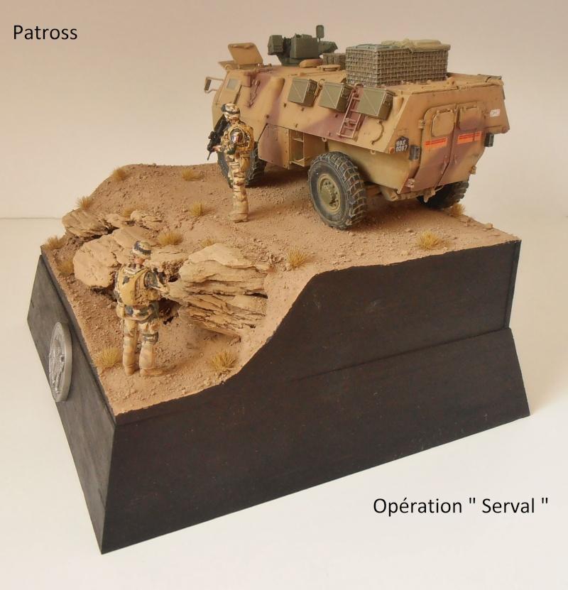 """Vab """" opération serval """" ( 1/35ème ) - Page 2 P9061414"""