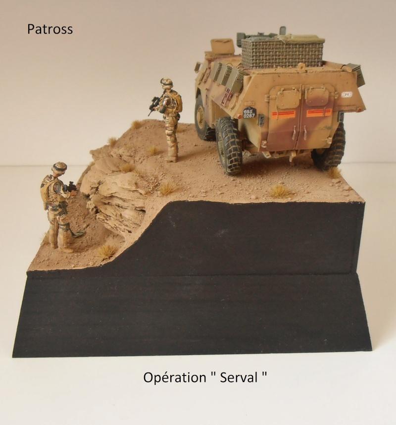 """Vab """" opération serval """" ( 1/35ème ) - Page 2 P9061415"""