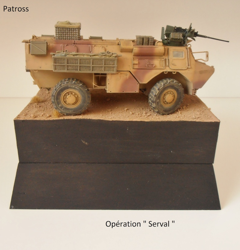 """Vab """" opération serval """" ( 1/35ème ) - Page 2 P9061416"""