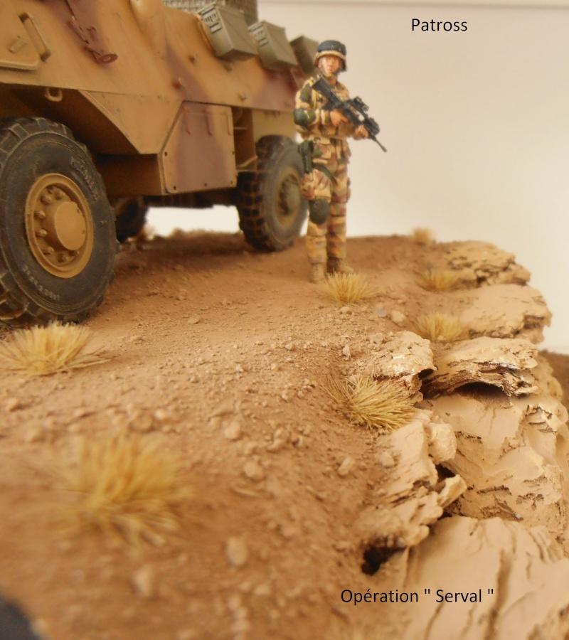 """Vab """" opération serval """" ( 1/35ème ) - Page 2 P9061419"""