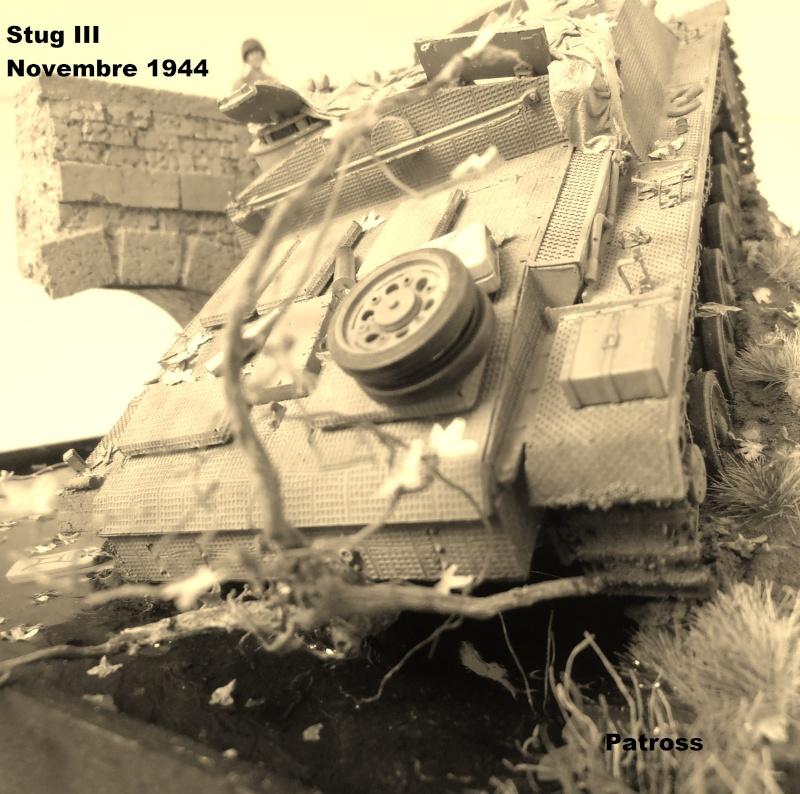 Stug III en mauvaise posture! ( tamiya au 1/35eme ) Pb110520
