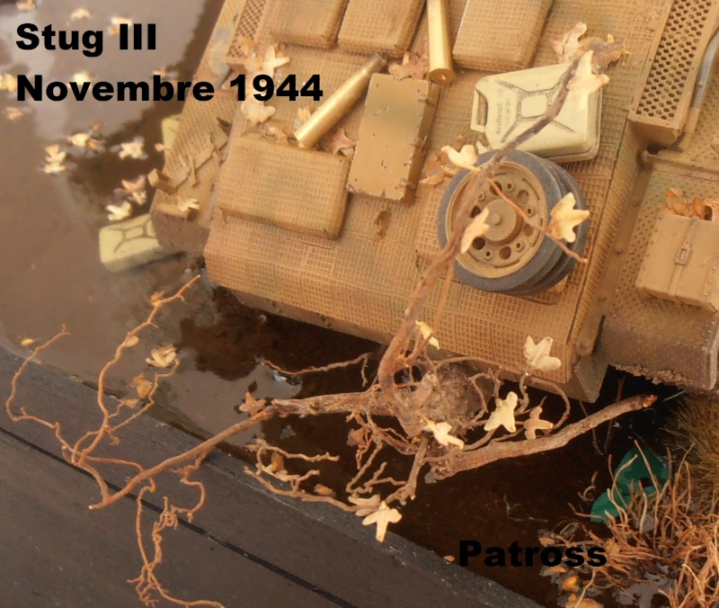 Stug III en mauvaise posture! ( tamiya au 1/35eme ) Pb110527