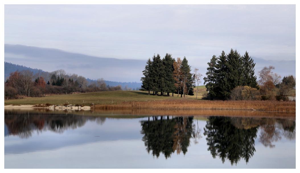 Au lac de l'abbaye Abbaye13