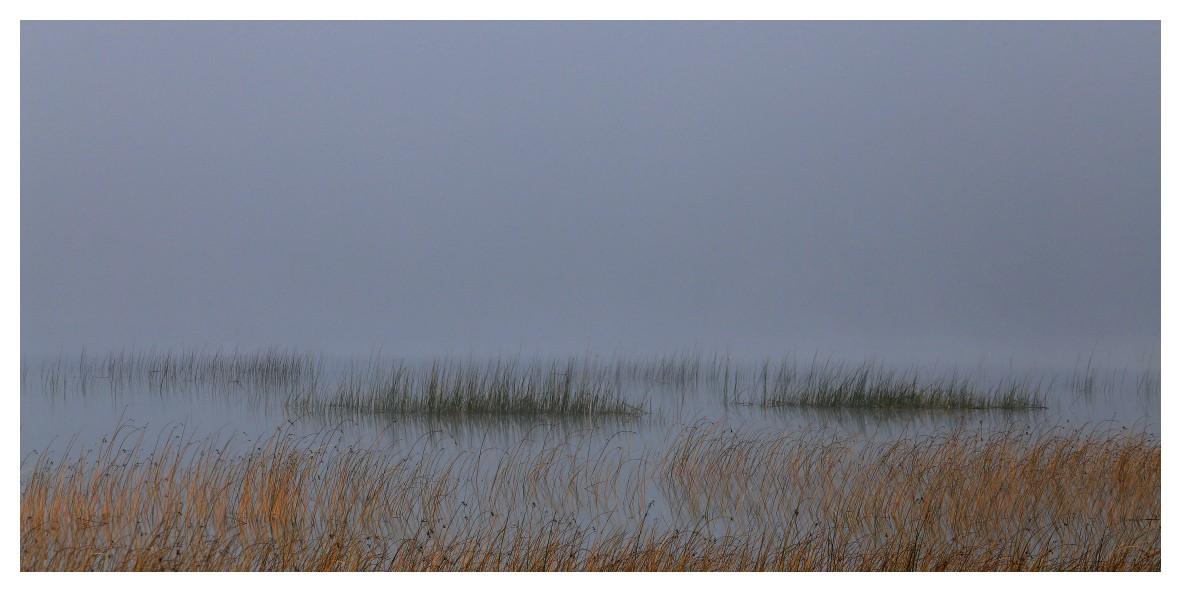 Le lac de Remoray tôt ce matin Marais10