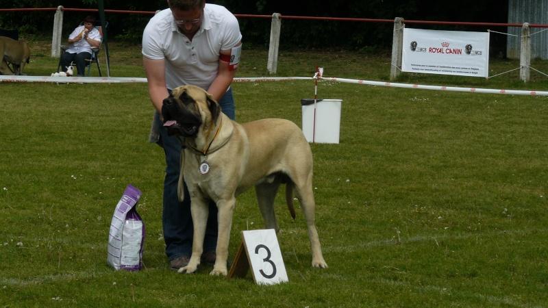 résultats Eros et Estrella ( allias xéna) 2011 Dogsho11