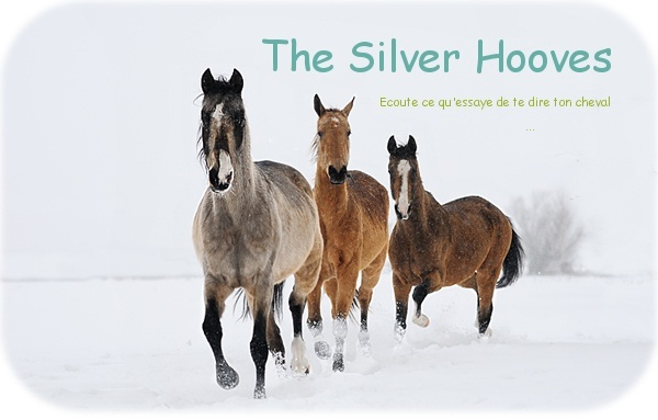The Silver Hooves