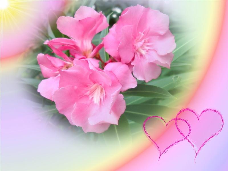 -Картинки-Весна- 1600-l10