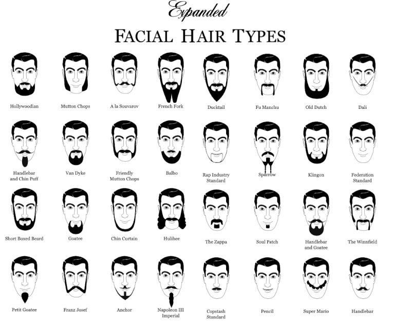 Un quelconque style de barbe ? Beardt12