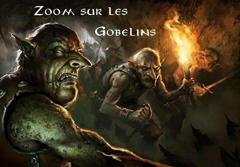 Zoom sur les Gobelins Gobz11