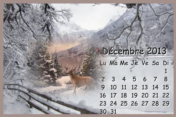 CALENDRIERS ORIGINAUX DES MOIS DE L ANNEE PAR ORDRE ALPHABETIQUE - Page 2 Decemb11