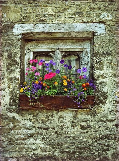 Des fenêtres d'hier et d'aujourd'hui. - Page 20 Fen_1712