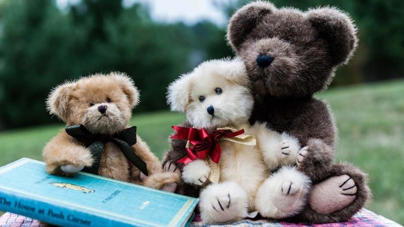 Les  Nounours  Teddy_53